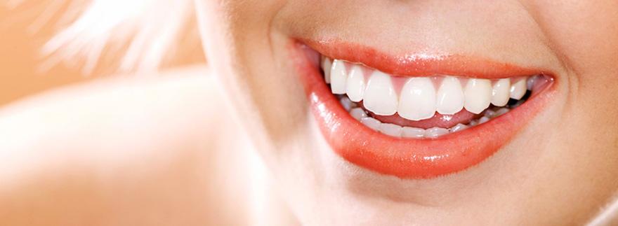 Технологии выращивания зубов 83